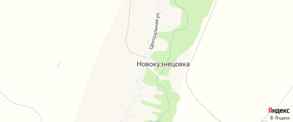 Центральная улица на карте поселка Новокузнецовки с номерами домов