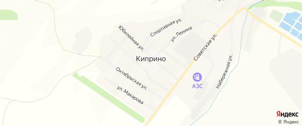 Карта села Киприно в Алтайском крае с улицами и номерами домов