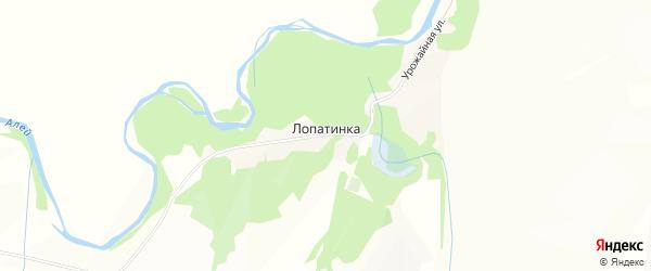 Карта поселка Лопатинки в Алтайском крае с улицами и номерами домов
