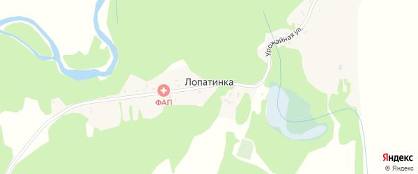 Урожайная улица на карте поселка Лопатинки с номерами домов