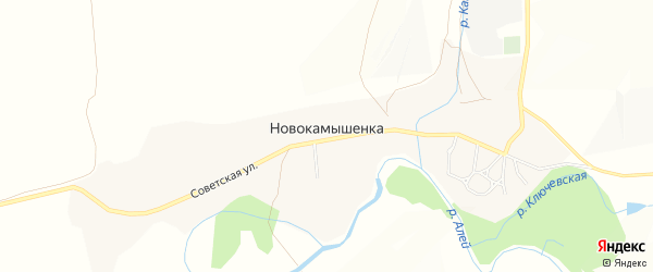 Карта поселка Новокамышенки в Алтайском крае с улицами и номерами домов