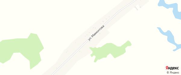 Улица Мамонтова на карте села Паново с номерами домов