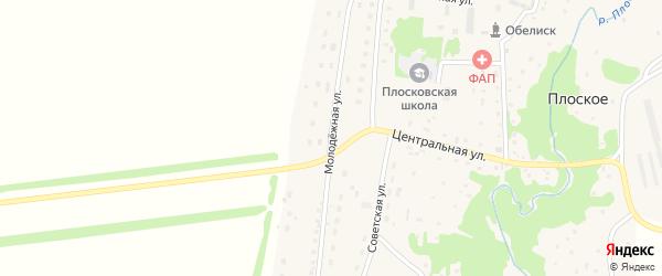 Молодежная улица на карте Плоского села с номерами домов