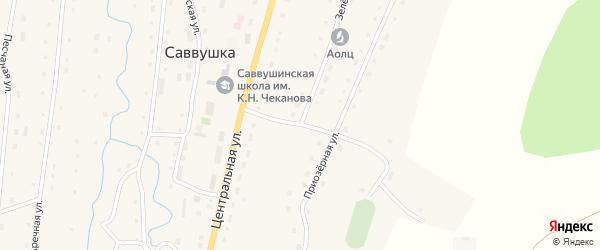 Зеленая улица на карте села Саввушки с номерами домов