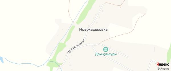 Центральная улица на карте поселка Новохарьковки с номерами домов