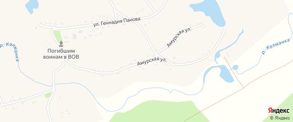 Амурская улица на карте села Паново с номерами домов