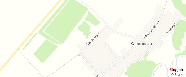 Садовая улица на карте поселка Калиновки с номерами домов
