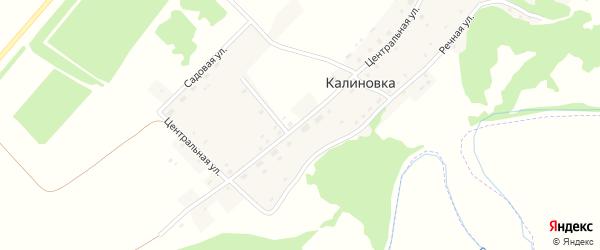 Центральная улица на карте поселка Калиновки с номерами домов