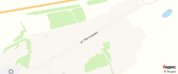 Улица Миткарева на карте села Паново с номерами домов