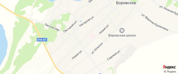 Карта Боровского села в Алтайском крае с улицами и номерами домов