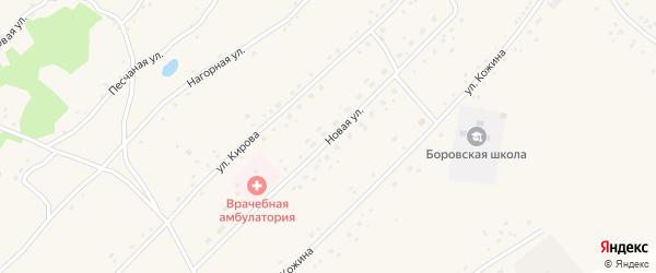Новая улица на карте Боровского села с номерами домов