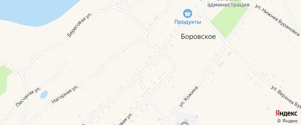 Улица Кирова на карте Боровского села с номерами домов