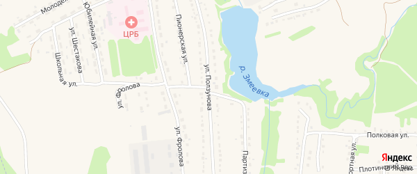 Улица Ползунова на карте Змеиногорска с номерами домов