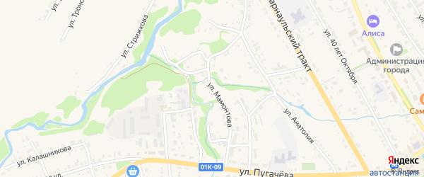 Улица Мамонтова на карте Змеиногорска с номерами домов