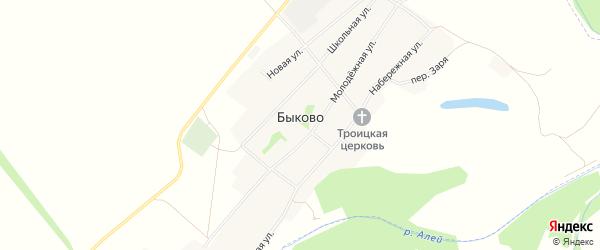 Карта села Быково в Алтайском крае с улицами и номерами домов