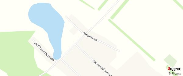 Озерная улица на карте поселка Верха-Боровлянки с номерами домов