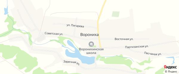 Карта села Воронихи в Алтайском крае с улицами и номерами домов
