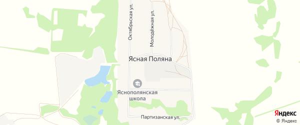 Карта села Ясной Поляны в Алтайском крае с улицами и номерами домов
