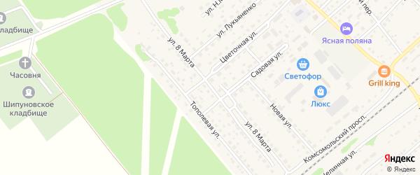 Улица 8 Марта на карте села Шипуново с номерами домов