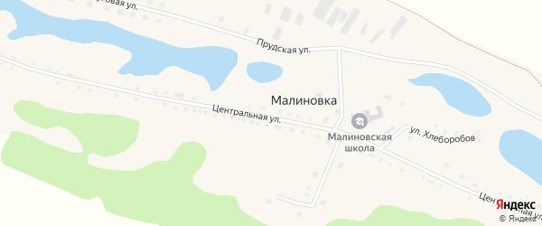 Луговая улица на карте села Малиновки с номерами домов