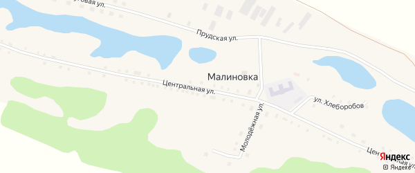 Улица Победы на карте села Малиновки с номерами домов