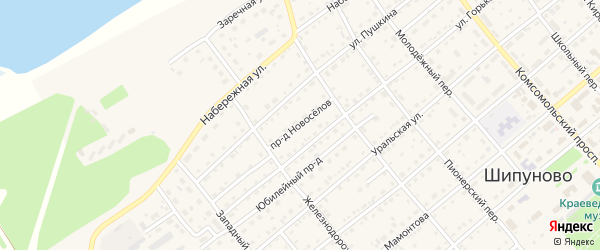Проезд Новоселов на карте села Шипуново с номерами домов