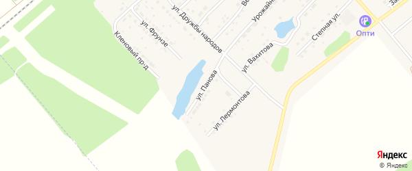 Улица Панова на карте села Шипуново с номерами домов