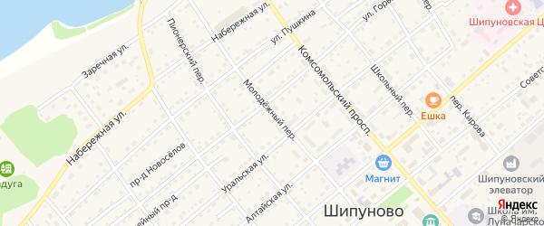 Молодежный переулок на карте села Шипуново с номерами домов