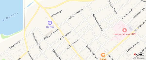 Улица Пушкина на карте села Шипуново с номерами домов