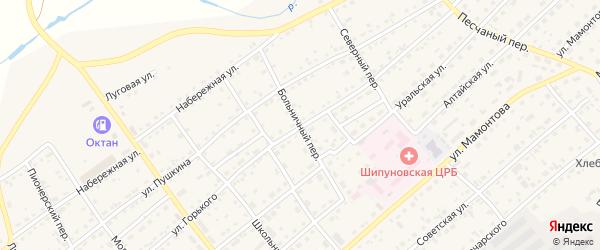 Больничный переулок на карте села Шипуново с номерами домов