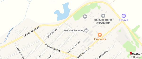Ю.Друниной переулок на карте села Шипуново с номерами домов