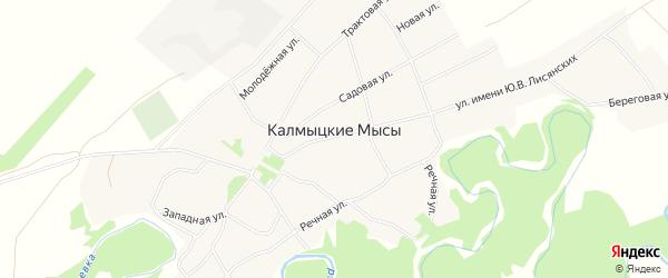 Карта села Калмыцкие Мысы в Алтайском крае с улицами и номерами домов