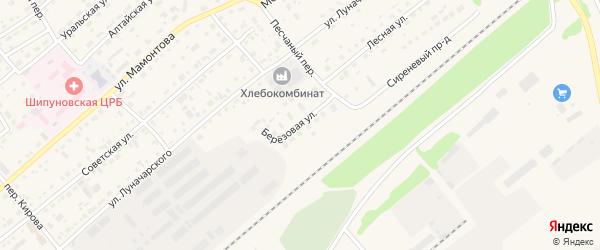 Березовая улица на карте села Шипуново с номерами домов