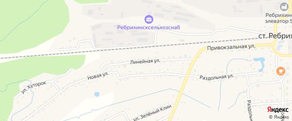 Линейная улица на карте станции Ребрихи с номерами домов