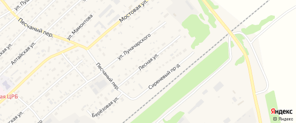 Лесная улица на карте села Шипуново с номерами домов