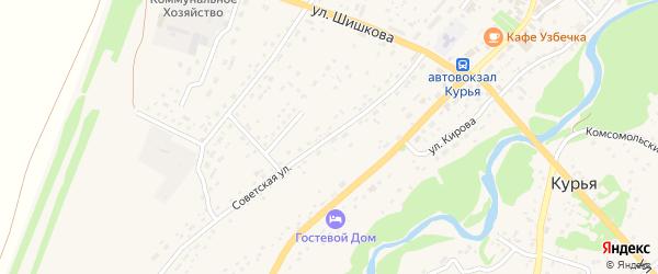 Советская улица на карте села Курьи с номерами домов