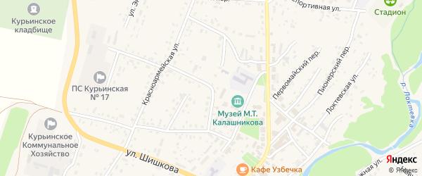 Юбилейная улица на карте села Курьи с номерами домов
