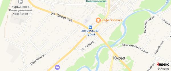 Центральная улица на карте села Курьи с номерами домов
