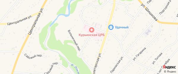 Больничный переулок на карте села Курьи с номерами домов
