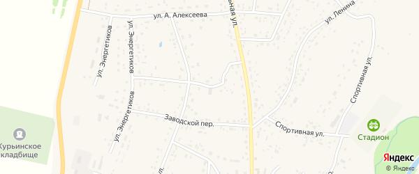 Совхозный переулок на карте села Курьи с номерами домов