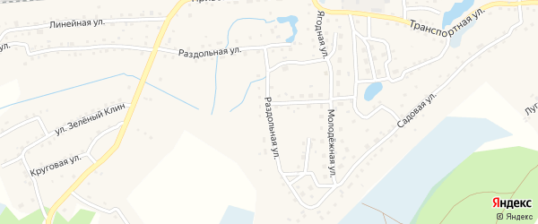 Раздольная улица на карте станции Ребрихи с номерами домов