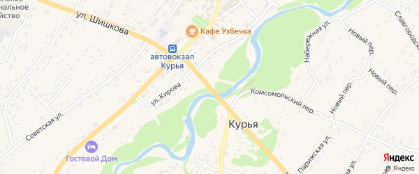 Улица Шишкова на карте села Курьи с номерами домов