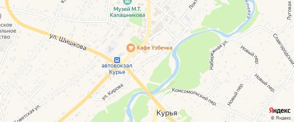 Улица Кирова на карте села Курьи с номерами домов