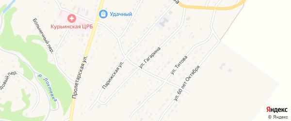 Улица Гагарина на карте села Курьи с номерами домов