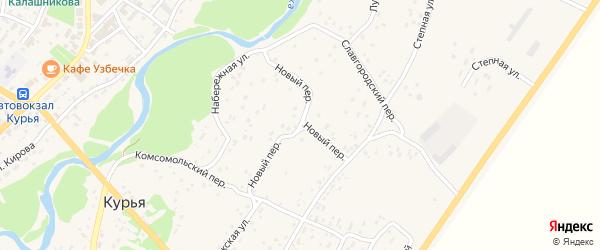 Новый переулок на карте села Курьи с номерами домов