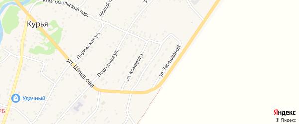 Улица Терешковой на карте села Курьи с номерами домов