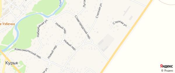 Славгородский переулок на карте села Курьи с номерами домов
