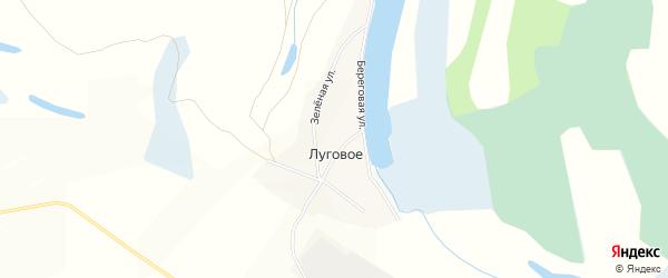 Карта Лугового села в Алтайском крае с улицами и номерами домов