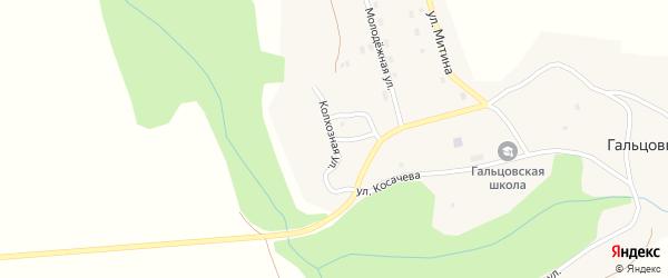 Колхозная улица на карте села Гальцовки с номерами домов