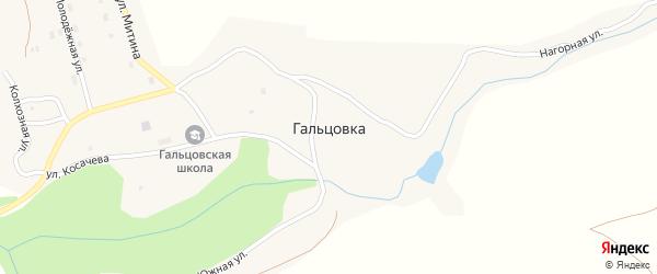 Улица Митина на карте села Гальцовки с номерами домов